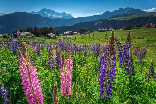 Spending Summer in Courchevel, Why not ?